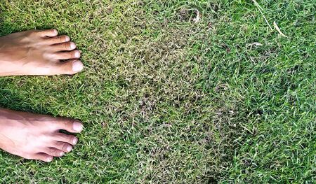 Bare foot on grass background