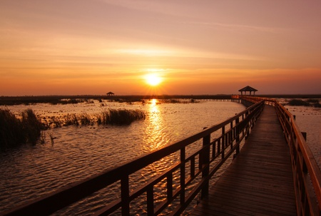 Boardwalk on the lake at sunset, Sam Roi Yod National Park, Prachuap Khiri Khan, Thailand. photo