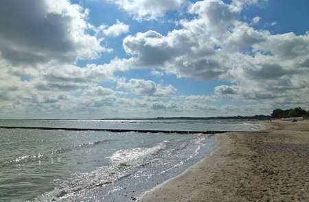 groynes: Wooden groynes on the beach at BoltenhagenBaltic Sea