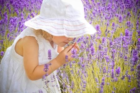 fiori di lavanda: Ragazza in abito bianco odore della lavanda