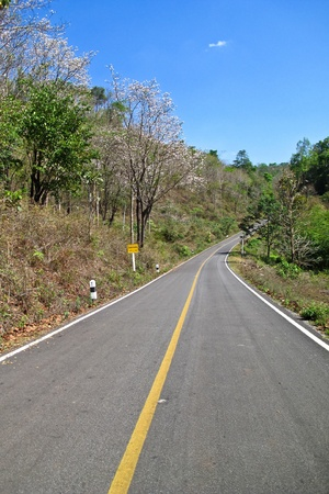 Empty countryside road in Thailand Stock Photo - 12989617