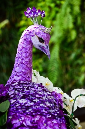Peacock made by purple orchids photo