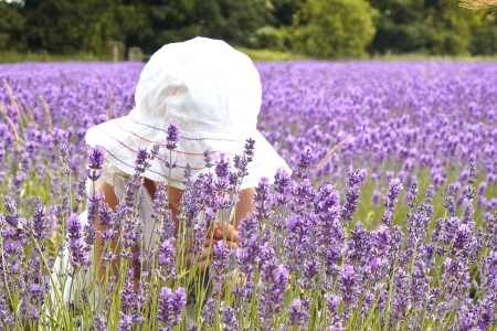 Girl in white dress is smelling the lavender
