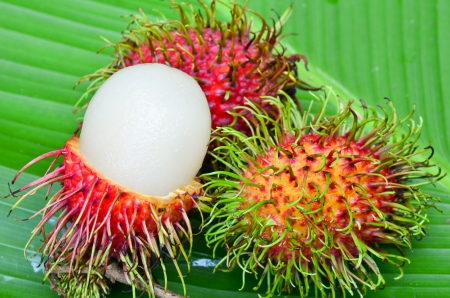 Rambutan on green leaf photo