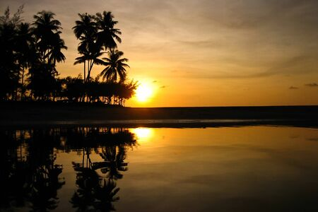 Sun set behind coconut trees Stock Photo - 17083682