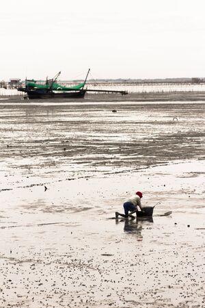shove: fisherman shove wooden board