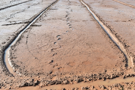 soil mud and footprint in rice field prepare for plant rice in agriculture