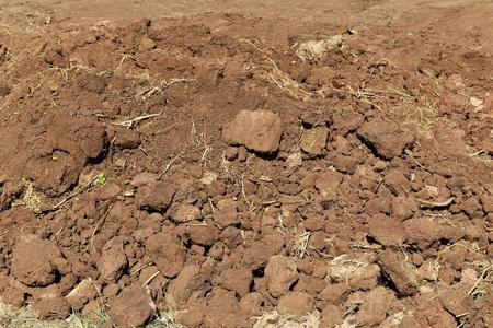 soil lump in rice field before plant rice Фото со стока
