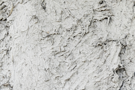 dry grass and mud for background