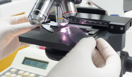 Details of medical laboratory, scientist hands using microscope. Stock Photo