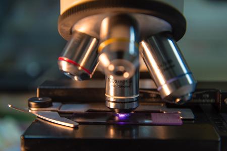veterinaria: dispararon cerca de microscopio en el laboratorio toman con tono Drak. Foto de archivo