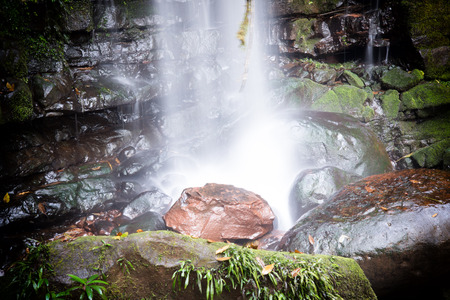 water fall: Water fall in forest Stock Photo