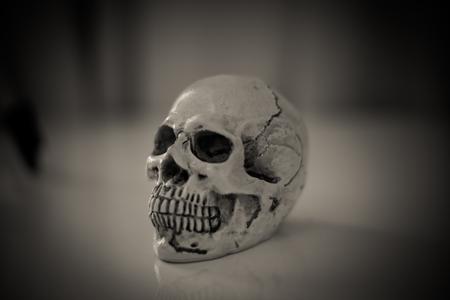 dark: skull in dark