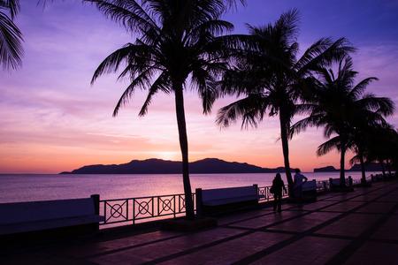 pink sunset: pink sunset Stock Photo