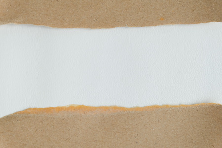 ripped: ripped white paper