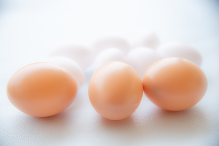 Close up Group of eggs on white tone. 免版税图像