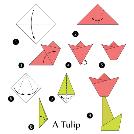 origami paper: step by step instructions how to make origami A Tulip.