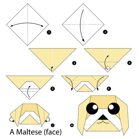 Step by step instructions how to make origami A Maltese face. Illustration
