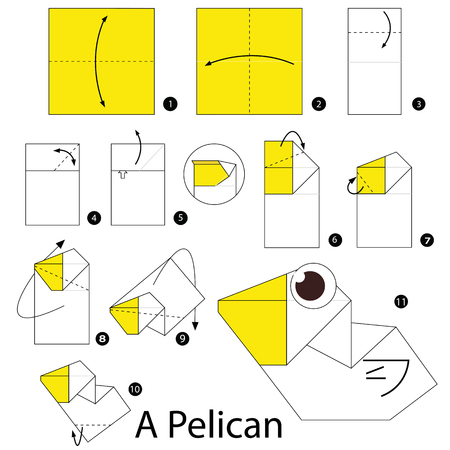 pelican: Step by step instructions how to make origami A Pelican.
