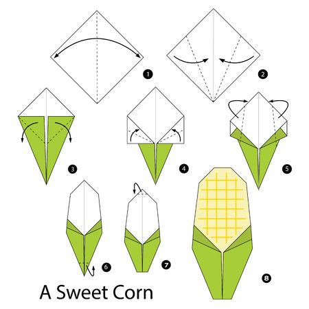 sweet corn: Step by step instructions how to make origami A Sweet Corn.