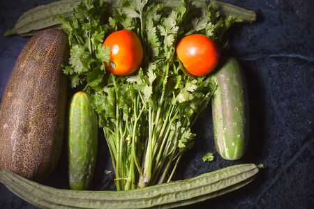 Ram Turai (Sponge gourd), Tomato, Cucumber and Coriander on black, green vegetable and salad