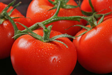 Tomatos in bunch posed on kitchen table covered with water droplet Banque d'images