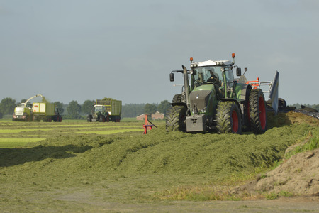 cut the grass: Agriculture, cut grass and chopping silage with tractors
