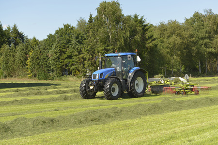 kidding: Agriculture, kidding or shake the grass with blue tractor with kidder