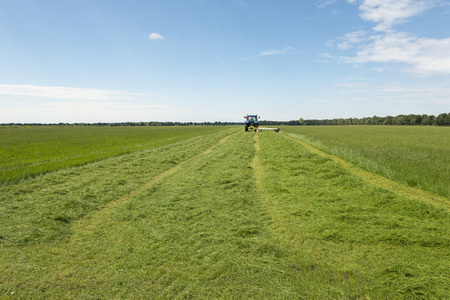 Agriculture, pasture mowing with blue tractor Reklamní fotografie