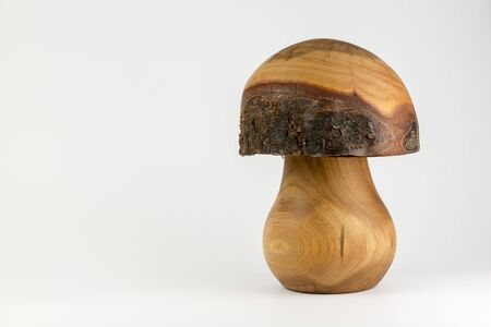 bark carving: Wooden mushroom carved out trunk of a birch ash decorative background
