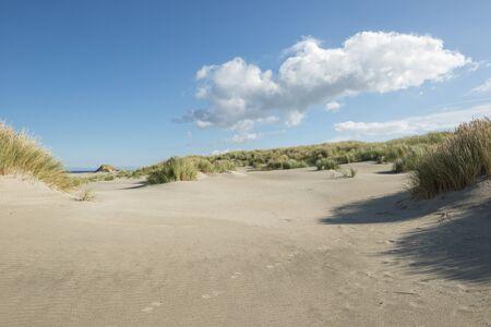 Traces in the dunes Reklamní fotografie