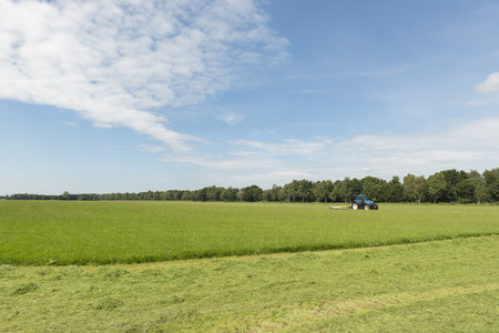 mechanization: pasture mowing with blue tractor and mower
