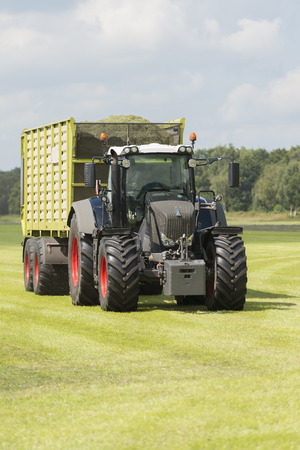 cut the grass: transport of cut grass with tractor and loader wagon