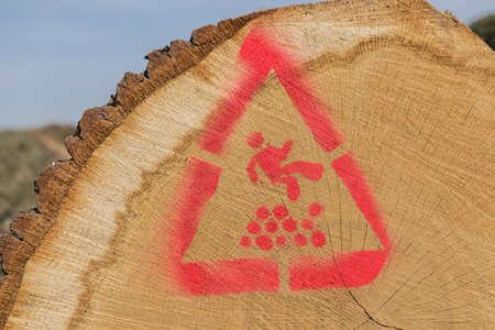 warned: Sawn trunks stacked on the side of the road with warning icons against ascend in the Netherlands