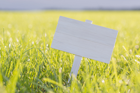 White wooden plate to place text in a sunny meadow 版權商用圖片