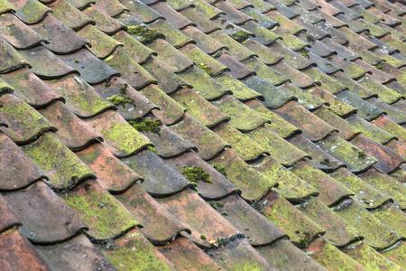 オランダの大きな本格的な農場で古いカラフルなセラミック焼き屋根タイル