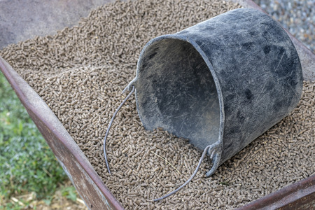 Wheelbarrow with pressed feed chunks as food for young cows and a black bucket 版權商用圖片