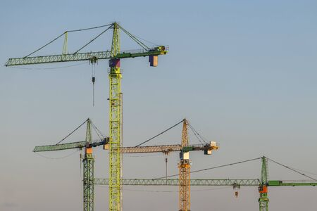 Four colorful high tower cranes in the evening light on a summer evening