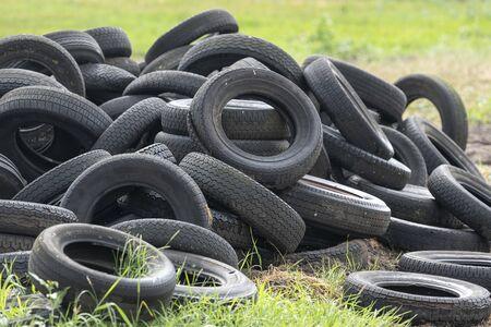Old worn tires in a grass field on a Dutch farm