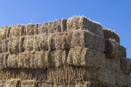 High stack of straw bales against a blue summer sky