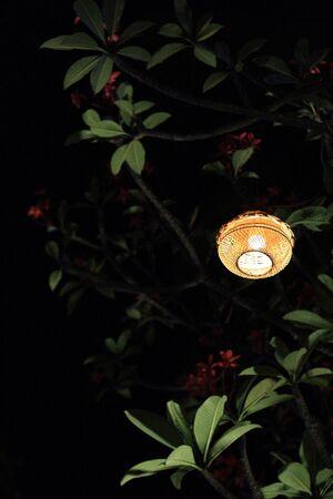 Lamp night light in garden