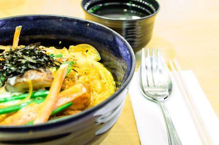 Tonkatsu With Rice And Egg, Japanese Food Style  photo