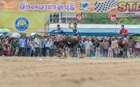 racing festival: Chonburi - OCTOBER 07 : Participants buffalo racing festival runs in 143th Buffalo Racing Chonburi 2014 on October 07, 2014 in Chonburi, Thailand. Editorial