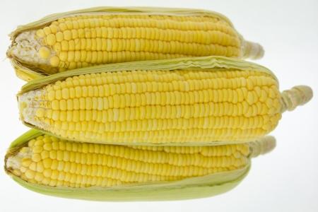 Ma�z amarillo sobre fondo blanco Foto de archivo