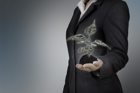 moneymaker: money tree on business woman