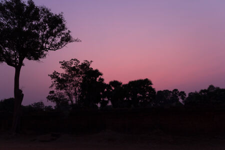 la puesta del sol de la silueta con los �rboles
