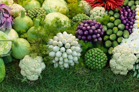 saludable: Group of herb fruit  and vegetable  ingredients for cooking