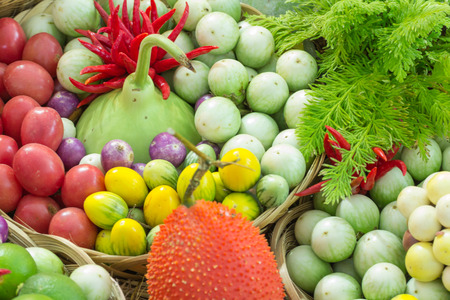 Group of herb fruit  and vegetable  ingredients for cooking