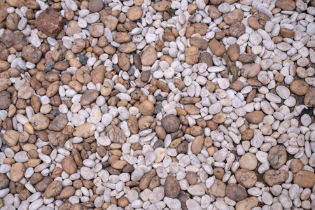 Small rock pebbles texture and background