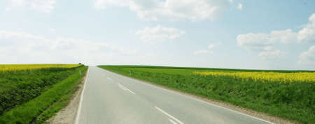 Road and rape seed Stock Photo - 2994747